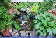 Jardin d'eau... (PHOTO EDOUARD PLANTE FRÉCHETTE, LA PRESSE) - image 3.0