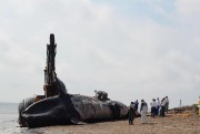 Une huitieme baleine noire a ete trouvee morte... (Photo d'archives) - image 1.0