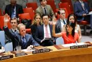 L'ambassadeur britannique Matthew Rycroft et l'ambassadrice américaine Nikki... (AFP, Eduardo Munoz Alvarez) - image 2.0