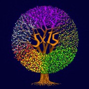 5 X15... (image fournie parGSI Musique) - image 1.1