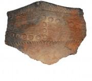 Ce fragment de vase a été retrouvé sur... (photo fournie par New York State Museum) - image 1.1