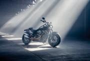 Le simple fait que Harley-Davidson accepte de s'aventurer... - image 8.0