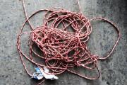Les cordes de toutes sortes sont à proscrire.... (Photo Edouard Plante-Fréchette, La Presse) - image 3.0