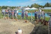 Au Lac-Saint-Jean, deux fermes recevaient les visiteurs dimanche,... (Le Quotidien, Gimmy Desbiens) - image 1.1