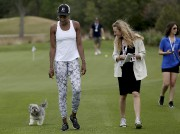 Venus Williams et son chien Harold à Charleston,... (Archives AP, Grace Beahm) - image 6.0