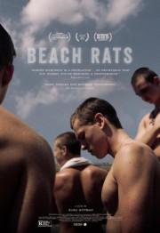 Beach Rats... (image Fournie par Métropole Films) - image 1.0