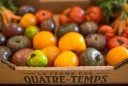 La terrasse et l'aménagement de plantes comestibles d'Alimentari... (PHOTO SIMON GIROUX, LA PRESSE) - image 2.0