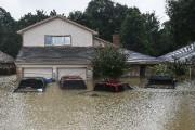 Quatre véhicules sous l'eau devant une maison de... - image 1.0