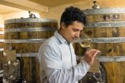 Alexis Paraschos s'occupe du vignoble avec son père... (Photo Robert Skinner, La Presse) - image 2.0