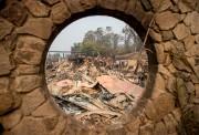 Le vignoble Signorello Estate a été dévoré par... (AFP) - image 3.0