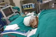 «La prochaine étape sera la reconstruction des crânes»,... (PHOTO AFP/FOURNIE PAR LE ALL INDIA INSTITUTE OF MEDICAL SCIENCE) - image 1.0