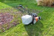 Avant l'hiver, vous devez ramasser les feuilles mortes...... (Photo Thinkstock) - image 2.0
