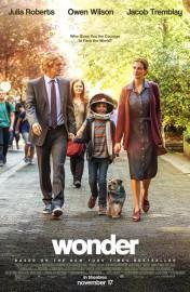 Wonder... (image fournie par Lionsgate) - image 2.0