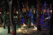 Pour l'événement Noël en lumière, les jardins du... (PHOTO FOURNIE PAR LE SANCTUAIRE NOTRE-DAME-DU-CAP) - image 3.0