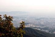À l'automne, Séoul est souvent en partie caché... (Photo Violaine Ballivy, La Presse) - image 2.0