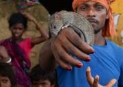 Phekan Manjhi fait partie de la communauté des... (AFP) - image 1.0
