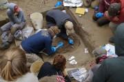 Les restes du nourrisson ont été découverts en... (REUTERS) - image 1.0