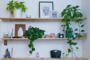 Jodie Prévost opte pour des variétés de plantes... (Photo Martin Tremblay, La Presse) - image 2.0