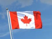 Alors qu'ils ne représentent que 1,4% du marché canadien, les véhicules... - image 6.0