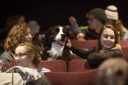 Oursin, un chien MIRA retraité, et ses maîtresses... (Olivier Jean, La Presse) - image 1.0
