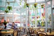 Le chaleureux solarium du Roseleaf Cafe dans lequel... (Photo Sarah Mongeau-Birkett, La Presse) - image 6.0