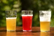 La chaleur est de retour. Exit les bières... (Photo Bernard Brault, La Presse) - image 2.0