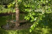 Selon Robert Mineau, l'arbre idéal est «sans entretien,... (Photo Thinkstock) - image 2.0