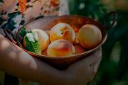 Voir les enfants se gaver de petits fruits à même... (Photo : Écomestible Inc) - image 3.0