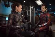 Evangeline Lilly (La Guêpe) et Paul Rudd (Ant-Man)... (image fournie par Disney Pictures) - image 1.0
