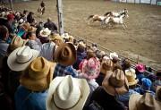 Le Festival western de Saint-Tite, qui attire principalement... (PHOTO DAVID BOILY, LA PRESSE) - image 1.0