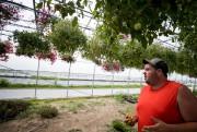 JulienLauzon, qui cultivedes tomates cerises et italiennes, des... (Photo MarcoCampanozzi, La Presse) - image 1.1
