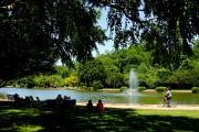 L'étang est le coeur de Freedom Park... (Photo Bernard Brault, La Presse) - image 2.0