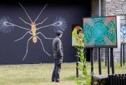 Un visiteur admire des oeuvres duscientifique britannique SpikeWalker,... (Photo AlainRoberge, La Presse) - image 2.0