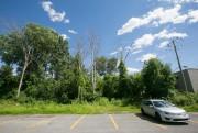 Le bois du Trait-Carre enclave les boulevards St-Martin,... (Photo François Roy, La Presse) - image 1.1