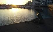 En arrivant à Faro, Alexandre s'est laissé porter... (PHOTO FOURNIE PARALEXANDRE FOURNIER) - image 1.1