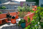 La terrasse du Cicchetti.... (Photo David Boily, La Presse) - image 3.0