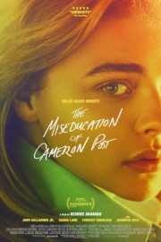 Affiche de The Miseducation of Cameron Post... (Affiche du film fournie par la production) - image 1.0