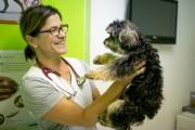 Brigitte Lacombe, vétérinaire... (Photo David Boily, La Presse) - image 7.0