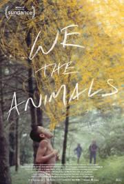 We the Animals... (AFFICHE DU FILM FOURNIE PAR LA PRODUCTION) - image 2.0