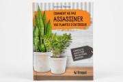 Comment ne pas assassiner vos plantes d'intérieur-Conseils de... (Photo Marco Campanozzi, La Presse) - image 1.0