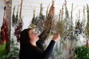 La fleuriste compose des petits bouquets pour permettre... (Photo Martin Chamberland, La Presse) - image 2.0