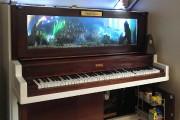 Après des heures de travail, un piano peut... (Photo tirée de la page Facebook de Janice Kay Magee Walz) - image 4.0