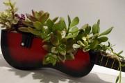 Une guitare peut très bien se transformer en... (Photo tirée de la page Facebook de The Sunroom Plants & Aquatics) - image 5.0