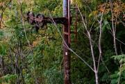 D'anciens poteaux de remonte-pente sont toujours visibles sur... (PHOTO BERNARD BRAULT, LA PRESSE) - image 1.0