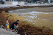 La Riviera Maya (côte sud-est du Mexique), la... (Photo Eduardo Verdugo, Associated Press) - image 3.0