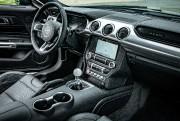 Toute forme de culte génère ses excès. La Mustang en... (Photo fournie par Ford) - image 2.1