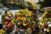 Des fleurs au Mercado de Jamaica... (Photo Alexis Gacon, collaboration spéciale) - image 4.0
