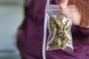 C'est aujourd'hui que ça se passe: le cannabis sera... (Photo La Presse) - image 5.0