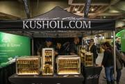 L'entreprise Kush Oil ne possède aucune licence de... (Photo Martin Tremblay, La Presse) - image 1.0