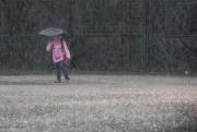 Pendant qu'il pleut ou tout juste après, observez... (Photo Olivier PontBriand, Archives La Presse) - image 2.0